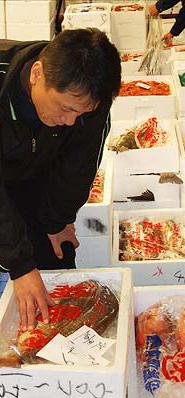 市場で鮮魚を仕入れる様子