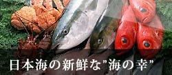 日本海の新鮮な海の幸